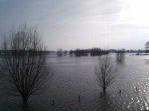 hoog water Tiel